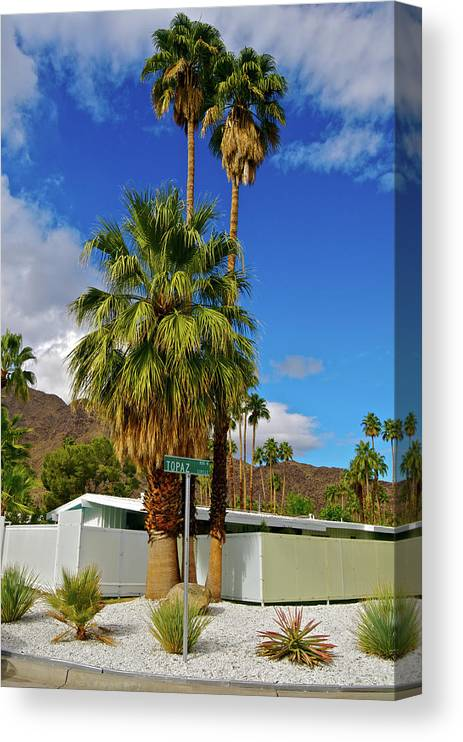 Fan Palm Tree Canvas Print featuring the photograph Mountains, Plants & Mid-century Home In by Jaylazarin