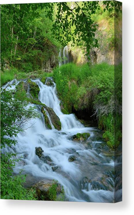 Scenics Canvas Print featuring the photograph Waterfall In Spearfish Cayon South by Groveb