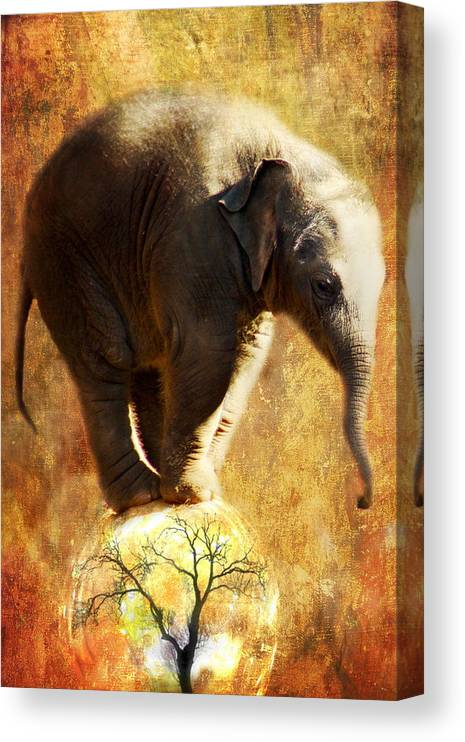Elephant Canvas Print featuring the digital art Balance by Trudi Simmonds