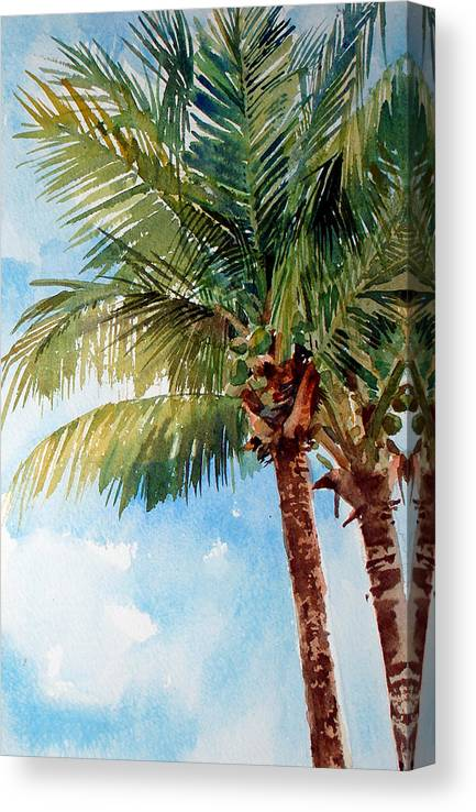 Coconut Palm Canvas Print featuring the painting Coconut Palm by Peter Sit