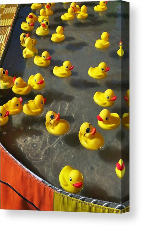 Duckies Canvas Print featuring the photograph Duckies by Skip Hunt