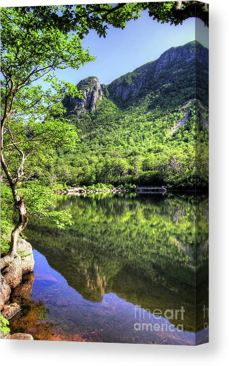 White Mountains Of New Hampshire Canvas Print featuring the photograph Eagle cliff by Diana Nault
