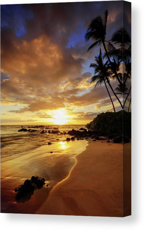 Glorious Canvas Print featuring the photograph Glorious by Chad Dutson