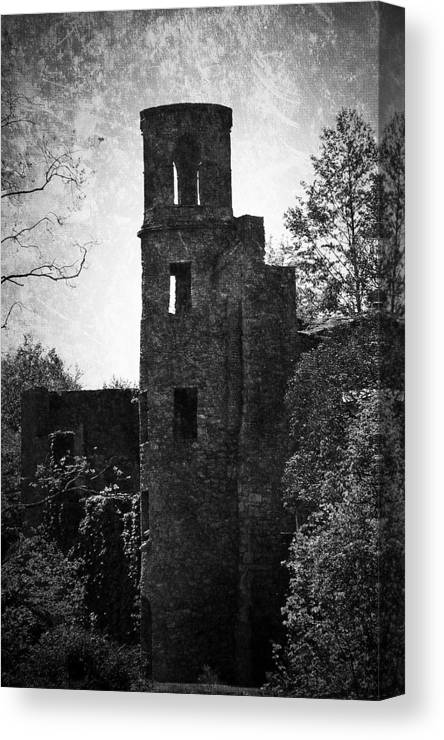 Irish Canvas Print featuring the photograph Gothic Tower at Blarney Castle Ireland by Teresa Mucha