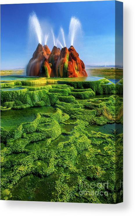 America Canvas Print featuring the photograph Green Fly Geyser by Inge Johnsson