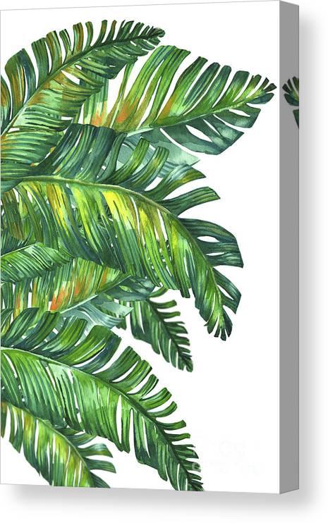 Summer Canvas Print featuring the digital art Green Tropic by Mark Ashkenazi