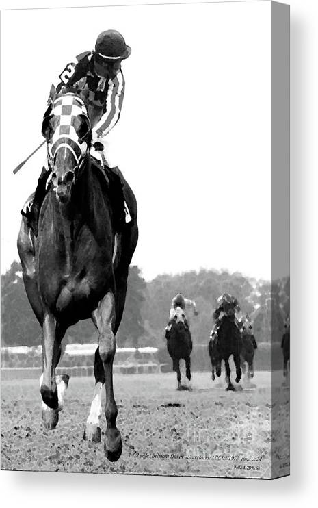 Looking Back Canvas Print featuring the painting Looking back, 1973 Secretariat, stretch run, Belmont Stakes by Thomas Pollart