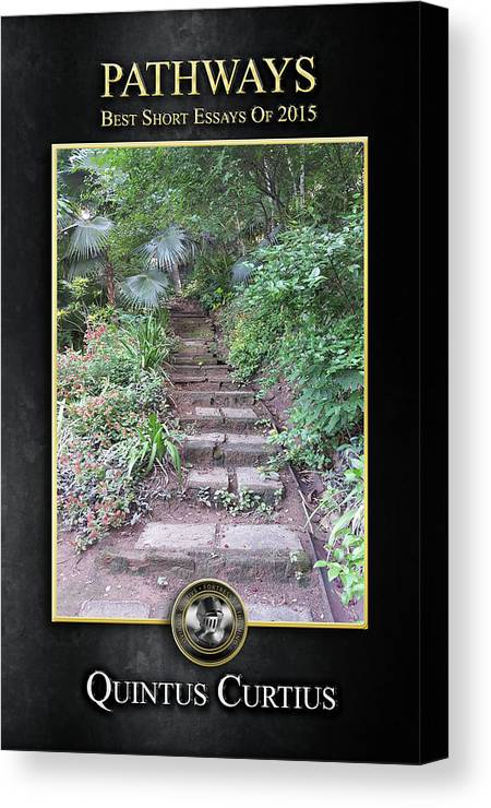 Pathways Canvas Print featuring the digital art Pathways by Quintus Curtius