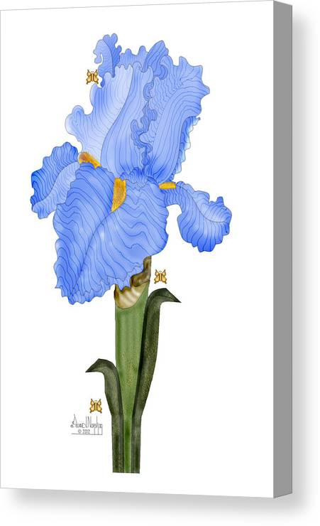 Anne Norskog Canvas Print featuring the painting Periwinkle Blue Iris by Anne Norskog
