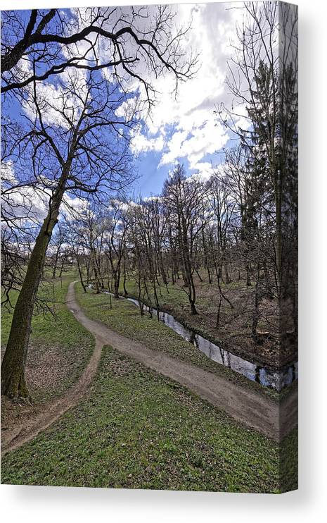 Alley Canvas Print featuring the photograph The path by the river in the park Sub Arini Sibiu Romania by Adrian Bud