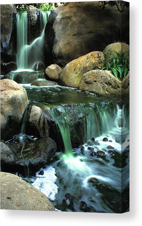 Water Canvas Print featuring the photograph Waterfall on Maui by Carl Purcell
