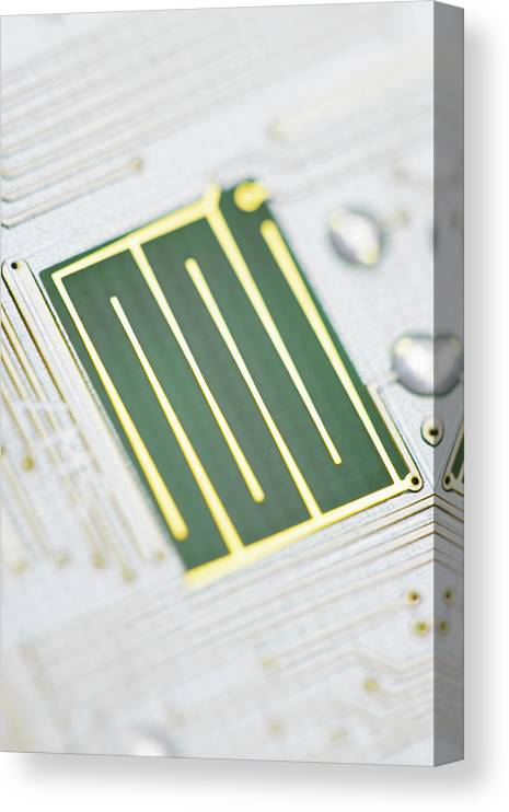 Tin Canvas Print featuring the photograph Close-up Of A Circuit Board by Nicholas Rigg