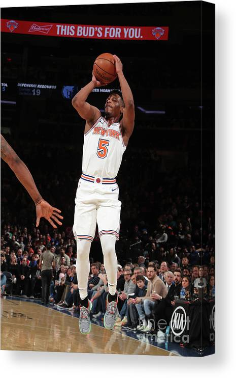 Nba Pro Basketball Canvas Print featuring the photograph Memphis Grizzlies V New York Knicks by Nathaniel S. Butler