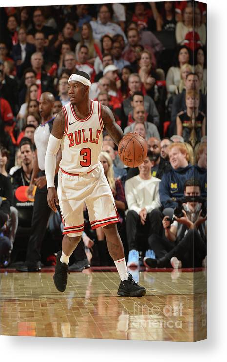 Nba Pro Basketball Canvas Print featuring the photograph Chicago Bulls V Toronto Raptors by Ron Turenne
