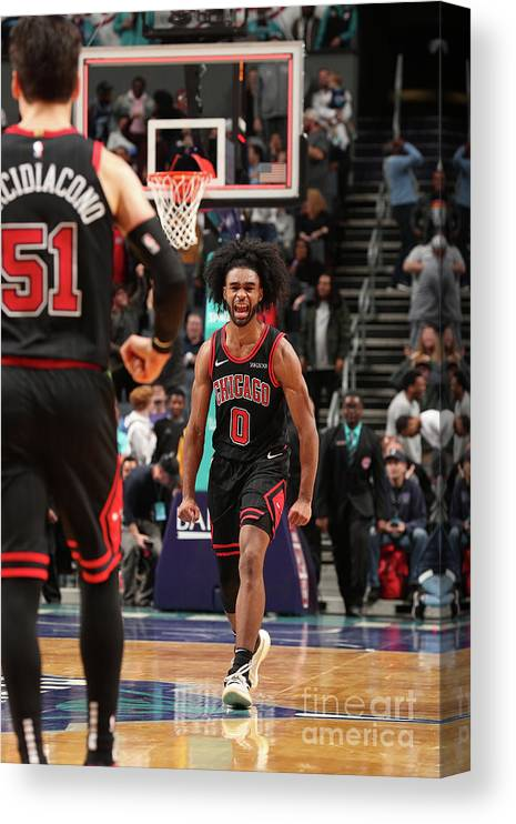 Coby White Canvas Print featuring the photograph Chicago Bulls V Charlotte Hornets by Kent Smith