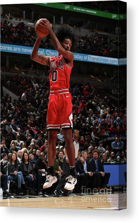 Coby White Canvas Print featuring the photograph New York Knicks V Chicago Bulls by Gary Dineen