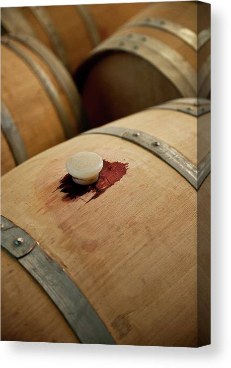 Spanish Basque Country Canvas Print featuring the photograph Bodegas Ysios Wine Cellar, Detail by Maremagnum