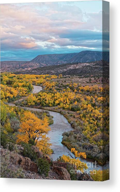 Rio Chama Canvas Print featuring the photograph Chama River Valley Golden Cottonwoods - Abiquiui Rio Arriba County New Mexico Land Of Enchantment by Silvio Ligutti
