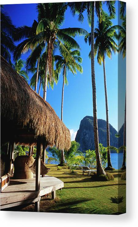 Tropical Tree Canvas Print featuring the photograph Dolarog Beach Resort With Inabuyatan by Dallas Stribley