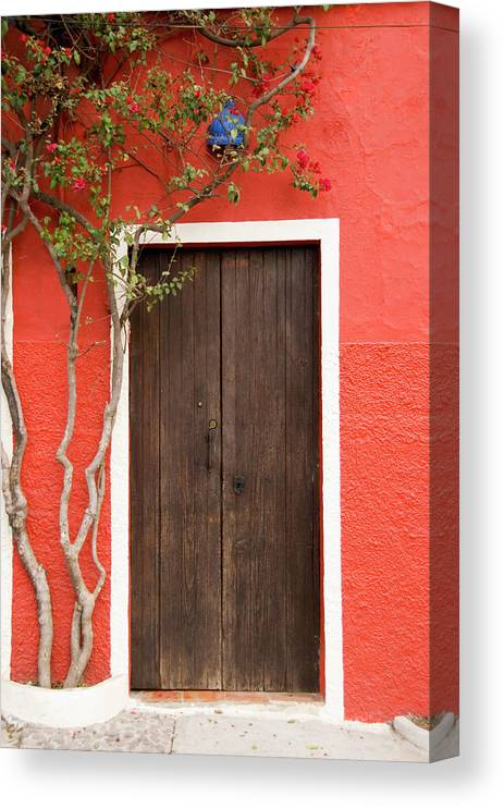 Built Structure Canvas Print featuring the photograph Doorway by Livingimages