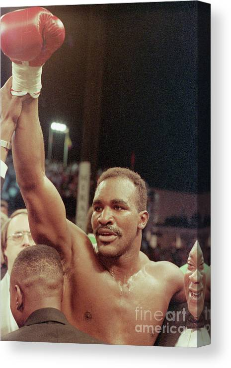 Human Arm Canvas Print featuring the photograph Evander Holyfield, Raised Arm In Victory by Bettmann