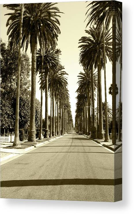 1950-1959 Canvas Print featuring the photograph Grayscale Image Of Beverly Hills by Marcomarchi