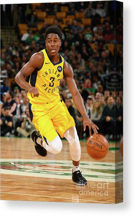 Nba Pro Basketball Canvas Print featuring the photograph Indiana Pacers V Boston Celtics by Steve Babineau