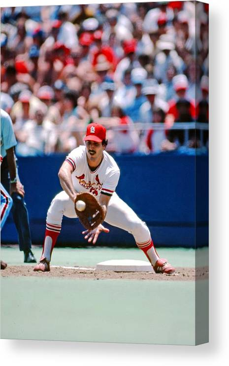 St. Louis Cardinals Canvas Print featuring the photograph Keith Hernandez St. Louis Cardinals by St. Louis Cardinals, Llc
