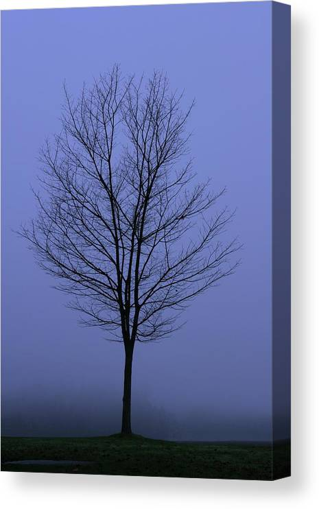 November Canvas Print featuring the photograph Moody Blue November Day by Zennie