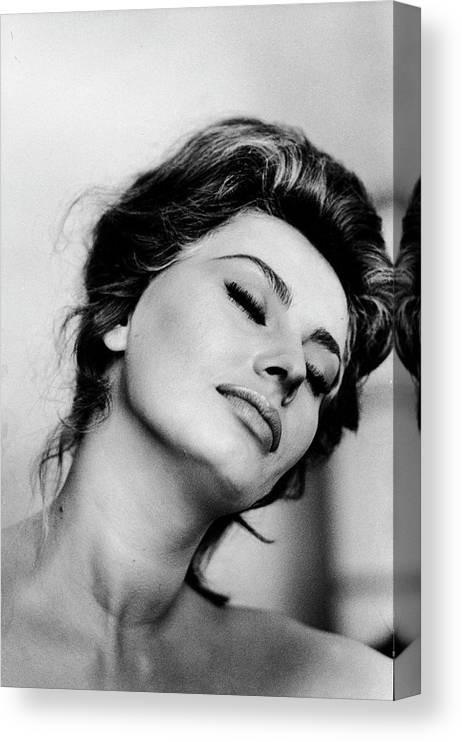 "SOPHIA LOREN 8/"" X 10/"" GLOSSY PHOTO REPRINT"