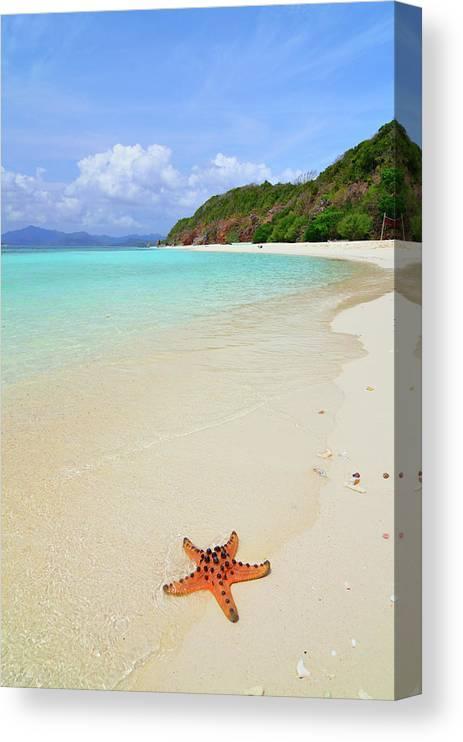 Water's Edge Canvas Print featuring the photograph Starfish On Beach Sand by Joyoyo Chen