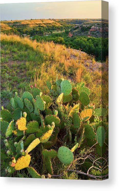Scenics Canvas Print featuring the photograph West Texas Canyon Country At Buffalo by Dszc