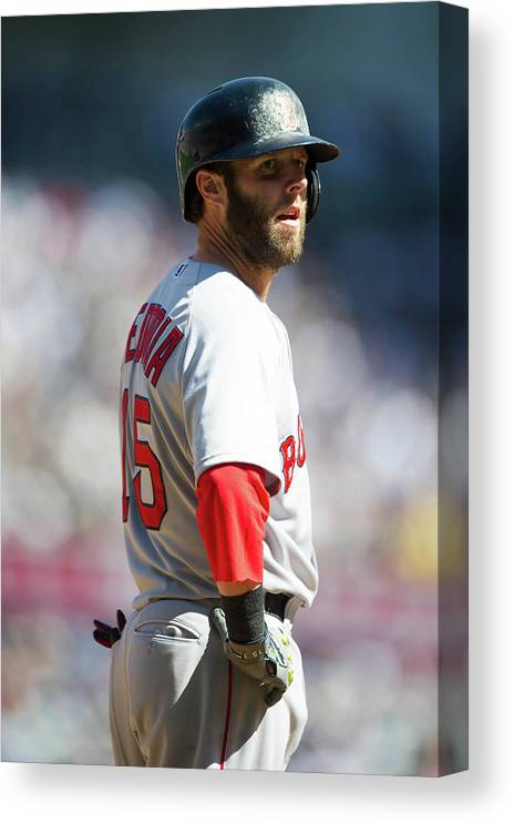 East Canvas Print featuring the photograph Dustin Pedroia by Rob Tringali