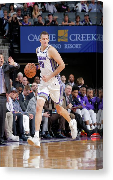 Nba Pro Basketball Canvas Print featuring the photograph Nemanja Bjelica by Rocky Widner