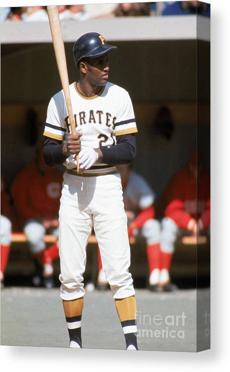 Sports Bat Canvas Print featuring the photograph Roberto Clemente by Mlb Photos