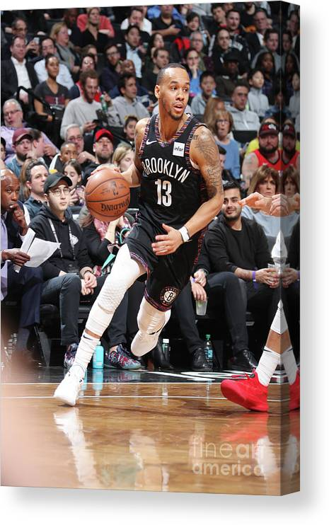 Nba Pro Basketball Canvas Print featuring the photograph Shabazz Napier by Nathaniel S. Butler