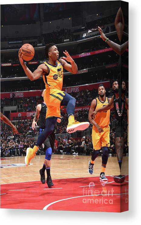 Nba Pro Basketball Canvas Print featuring the photograph Donovan Mitchell by Andrew D. Bernstein
