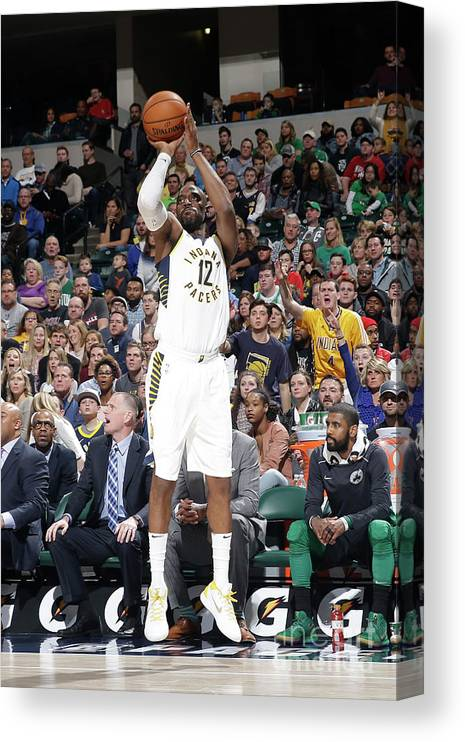 Nba Pro Basketball Canvas Print featuring the photograph Damien Wilkins by Nba Photos
