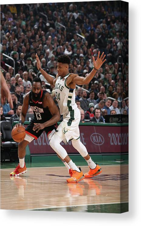 Nba Pro Basketball Canvas Print featuring the photograph Giannis Antetokounmpo and James Harden by Gary Dineen