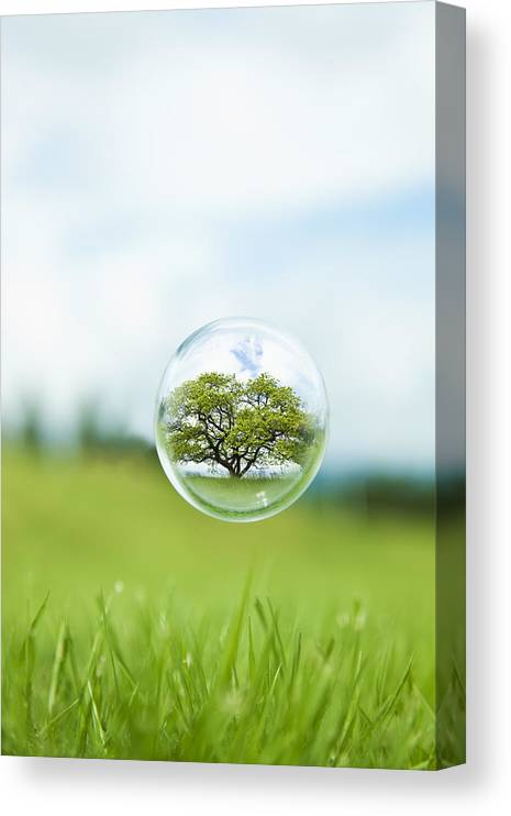 Environmental Conservation Canvas Print featuring the photograph Globe In The Air by Yuji Sakai