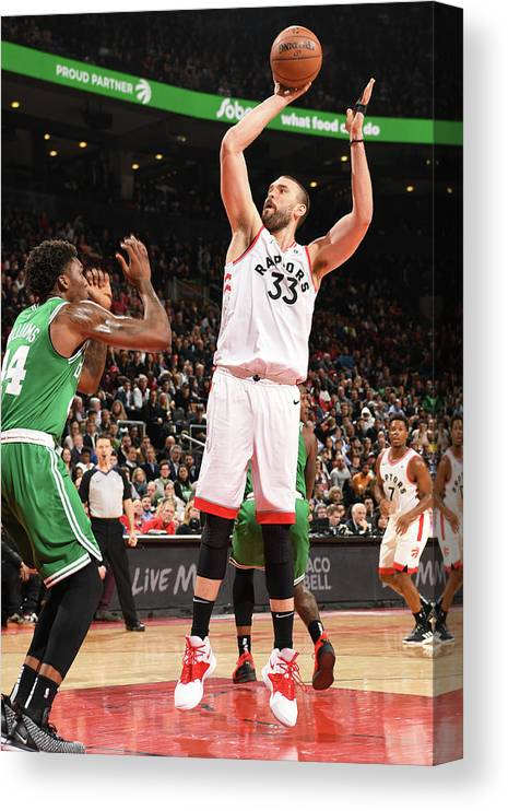 Nba Pro Basketball Canvas Print featuring the photograph Marc Gasol by Ron Turenne