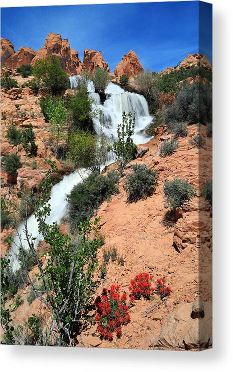 Scenics Canvas Print featuring the photograph Waterfall between red sandtsone rocks in a desert landscape by Rainer Grosskopf