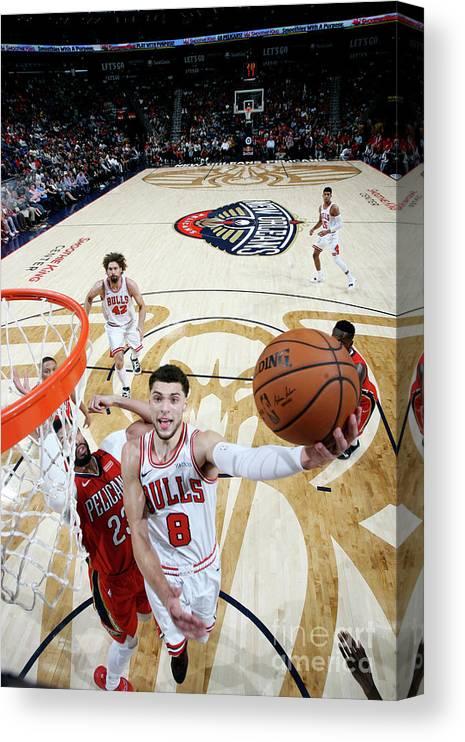 Chicago Bulls Canvas Print featuring the photograph Zach Lavine by Layne Murdoch Jr.
