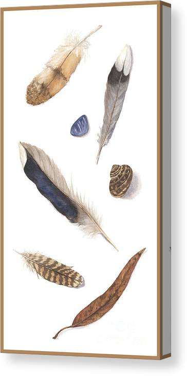 Feathers Canvas Print featuring the painting Found Treasures by Lucy Arnold