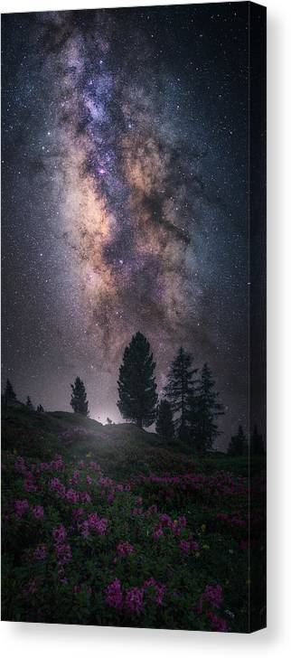 Milkyway Canvas Print featuring the photograph Art Of Night V by Carlos F. Turienzo