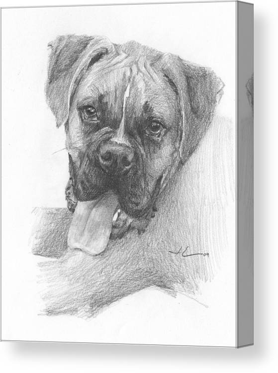 <a Href=http://miketheuer.com Target =_blank>www.miketheuer.com</a> Boxer Dog Pencil Portrait Canvas Print featuring the drawing Boxer Dog Pencil Portrait by Mike Theuer