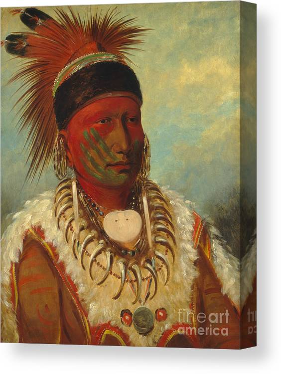 Mo; Hos; Ka; Tribe; Native American Indian; Feathered; Headdress; Feathers; Tattoo; Tattoos; Tribal Markings; Marking; Leader; Chieftain; Iowa; Male; Portrait; Bone Necklace; Tusks; Teeth; Animal Skin; Costume; Traditional; Dress Canvas Print featuring the painting The White Cloud Head Chief of the Iowas by George Catlin