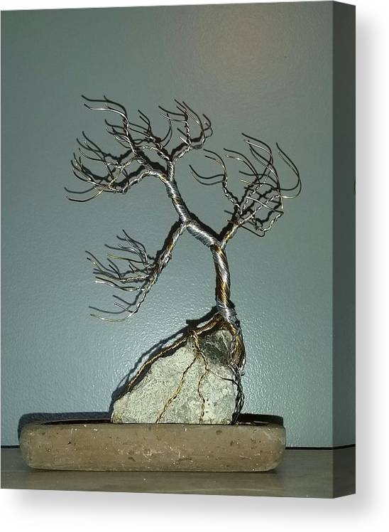 63 Windswept Bonsai Tree Root Over Rock Canvas Print Canvas Art By Ricks Tree Art