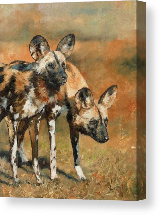 Wild Dogs Canvas Print featuring the painting African Wild Dogs by David Stribbling
