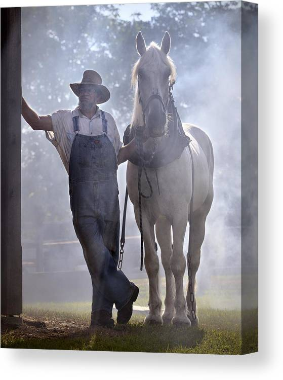 Horse Canvas Print featuring the photograph Covered in Smoke by Don Schroder